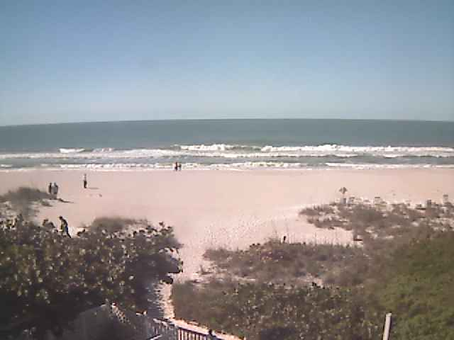 Tues 11am updater: Wasit high, plus at the best spots not too choppy. Go for a surf if you can.