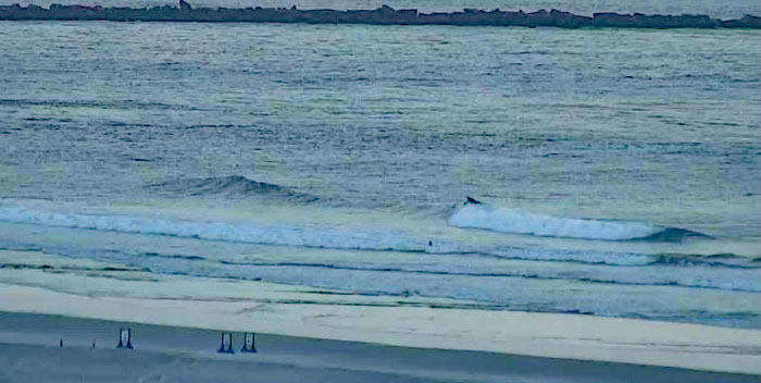 NSI Saturday am looks chest high and glassy on sets.